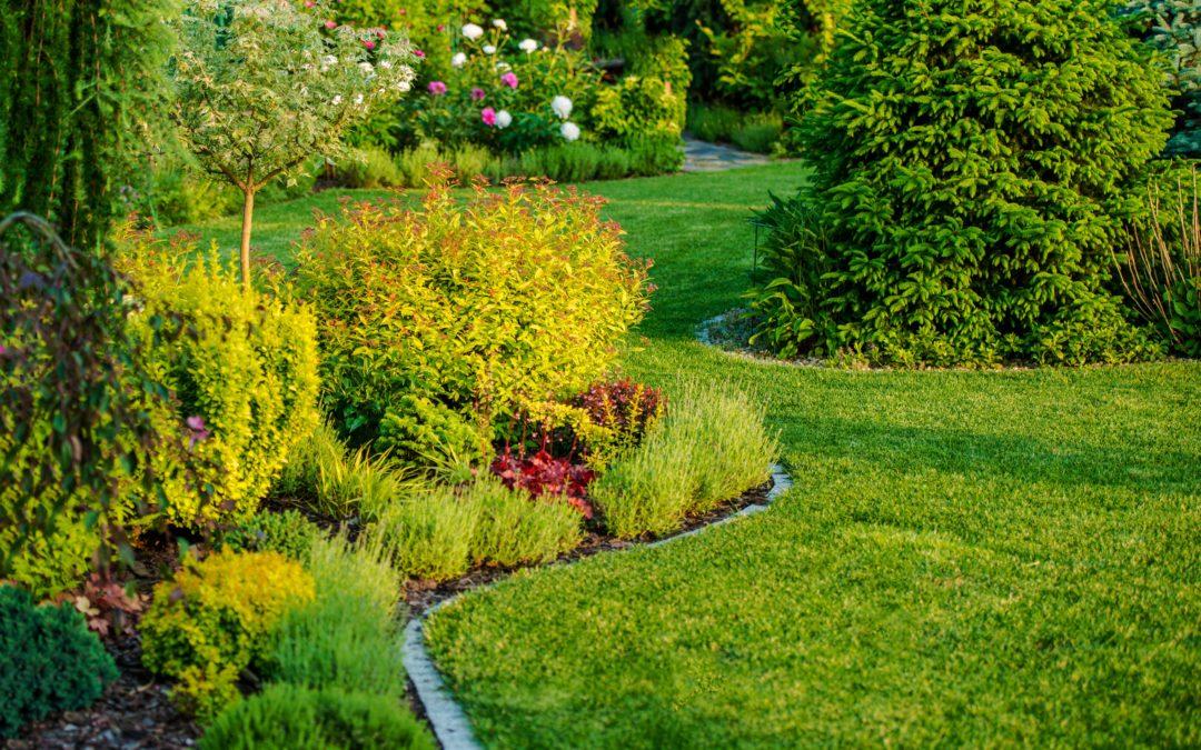 Beispielbild Gartenbau Landschaftsbau
